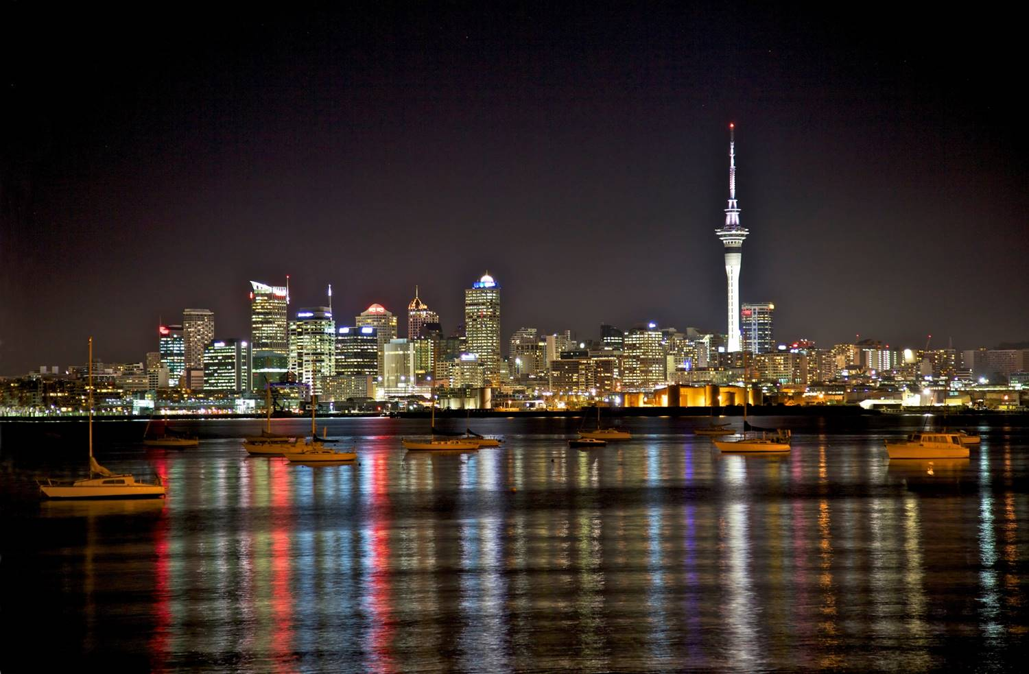 auckland real estate